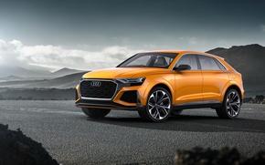 Picture Concept, Audi, Audi, the concept, crossover