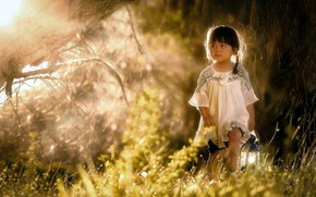 Picture nature, morning, girl
