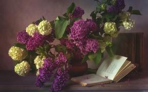 Picture bouquet, book, lilac, hydrangea
