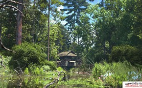 Picture forest, nature, pond, building, the woods