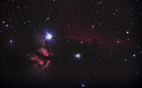 Picture nebula, dark, Horse Head, Orion, in the constellation