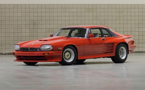 Picture jaguar, orange, special 1, xjs