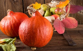 Picture pumpkin, basket, pear, the gifts of autumn