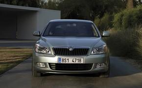 Picture 2008, sedan, front view, Skoda, Skoda, Octavia
