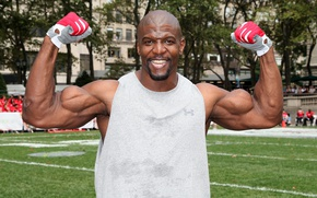 Wallpaper look, smile, bald, actor, gloves, muscle, muscle, pose, Terry Crews, Terry Crews, bodybuilder, biceps, bodybuilder