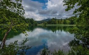 Picture nature, lake, overcast