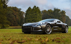 Picture the sky, grass, trees, nature, lawn, Aston Martin, foliage, ONE-77