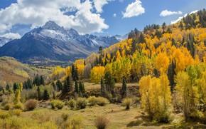Picture autumn, landscape, mountains, nature