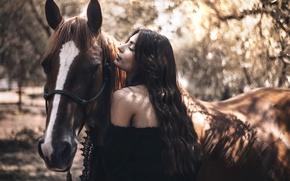 Picture girl, horse, bokeh