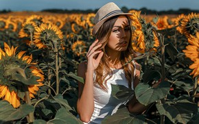 Picture summer, the sun, sunflowers, hat, Damian Feather