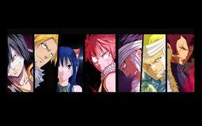 Picture Cobra, Rogue, dragon, Wendy, Sting, Fairy Tail, Natsu, mahou, Laxus, Gajeel, madoshi, dragon Slayer