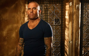 Picture Prison Break, tatoo, Lincoln Burrows, season 5, tv series, Yemen, Ogygia
