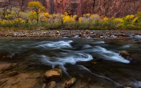 Picture autumn, trees, nature, river, rocks, stream, USA