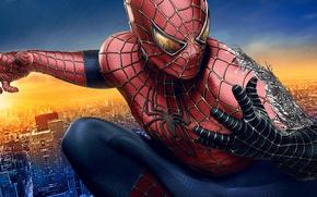 Picture Movie, Symbiote, Spider Man 3