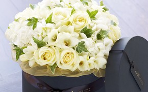 Picture flowers, box, gift, roses, bouquet, white, eustoma