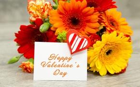 Wallpaper romantic, gerbera, valentine`s day, love, flower, orange, heart
