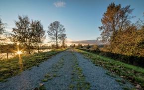 Picture road, autumn, sunset, lake, Park, river