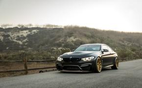 Picture BMW, Black, GTS, F82, Sight