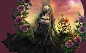 Picture look, girl, roses, anime
