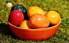 Picture holiday, eggs, Easter, Cup, eggs