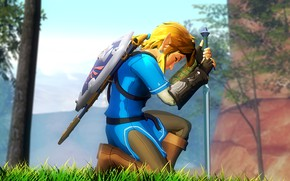 Picture sword, shield, Nintendo, link, legend of zelda