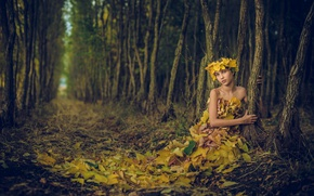 Picture forest, leaves, girl, Ivan Slavov