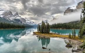 Picture Canada, national Park, Jasper