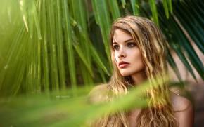 Picture look, girl, nature, face, Palma, photo, model, black, Miki Macovei Come With, Venkara Capris, Kara …