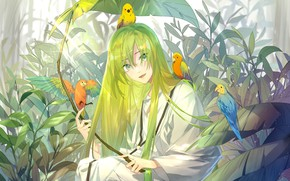 Picture nature, anime, art, parrots, Fate / Grand Order