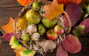 Wallpaper leaves, apples, basket, pear, the gifts of autumn, fruit