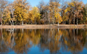 Picture autumn, trees, lake, pond, Park