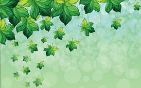 Picture background, Leaves, Texture