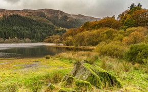 Picture autumn, forest, grass, trees, mountains, clouds, lake, England, moss, Loch Chon