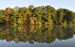 Picture autumn, lake, woodland