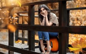 Picture autumn, leaves, girl, bridge, mood, guitar, Alessandro Di Cicco