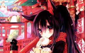 Picture Sakura, girl, characters, temple, ears, long hair, japan, art, torii, buns, windmill, neko girl, sakko …