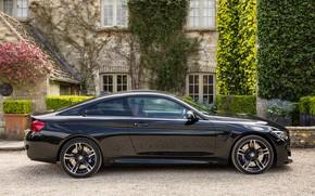 Picture black, BMW, M4