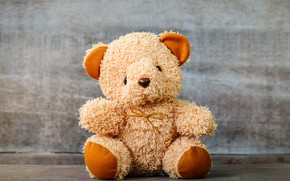 Picture toy, Bear, plush