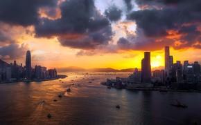 Wallpaper Hong Kong, Eastern, Pak Root