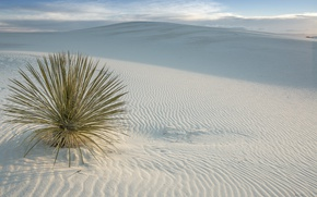 Picture desert, USA, USA, New Mexico, San Miguel, White Sands National Monument