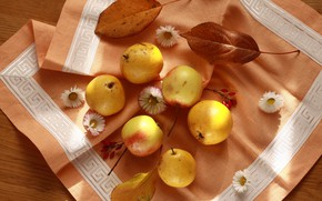 Picture autumn, leaves, flowers, apples, fruit, still life, pear, napkin