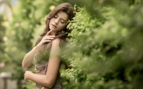 Picture summer, leaves, girl, nature, brown hair, the bushes