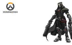 Picture sake, reaper, overwatch