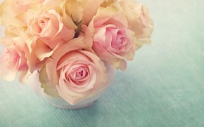 Picture Flowers, bouquet, Roses, buds
