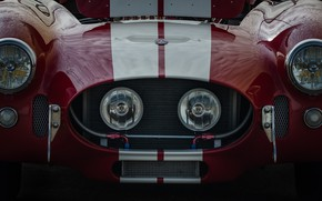 Wallpaper Cobra, the front, Shelby