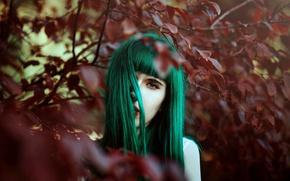 Wallpaper background, hair, color, model look