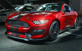 Wallpaper Mustang, Ford, Shelby, GT350