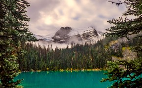 Picture forest, clouds, trees, mountains, fog, lake, stones, rocks, Canada