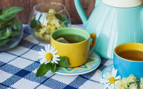 Wallpaper tea, lemon, Daisy, herbal, grass, wood, Cup, tea, lemon, cup