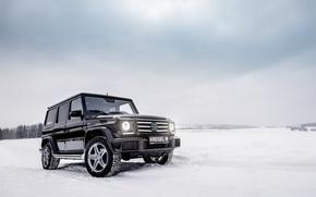 Wallpaper Mercedes, G-Class, winter, vnedorozhnik, Mercedes-Benz, g, W463